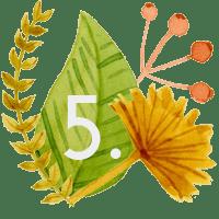 web design by bhakti kulmala